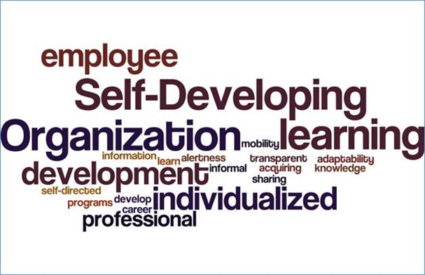 Nuage de tags sur le Self Developing Organization