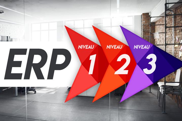 Quelle est la différence entre les ERP de niveau 1, 2 et 3 ?