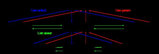 structure classique de maillage interne