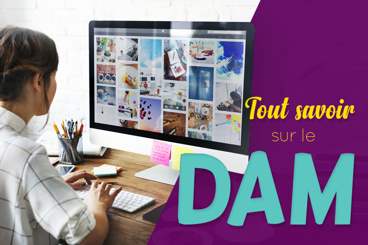 DAM ! Le digital asset management, de la définition à la solution
