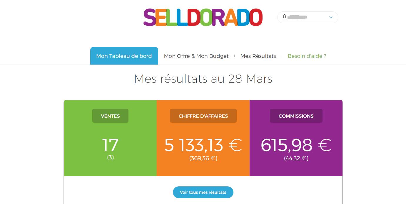 agence adwords Selldorado
