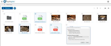 Laisser la possibilité de télécharger les fichiers selon ses besoins