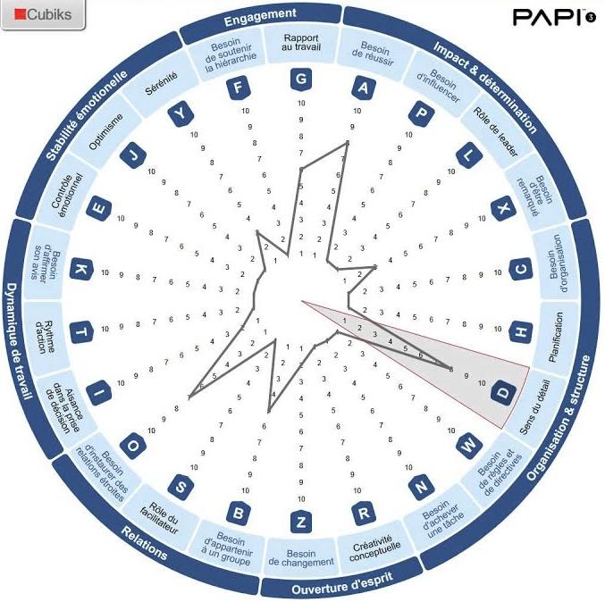 test-personnalite-professionnel_papi_cubiks