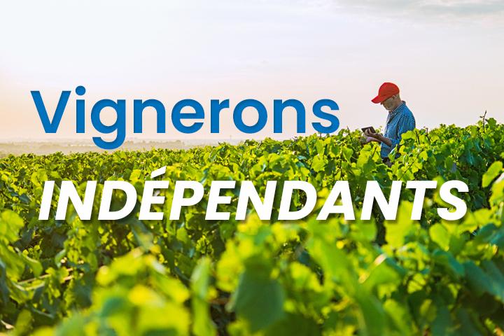 Vignerons indépendants : quelles opportunités pour développer votre activité ?