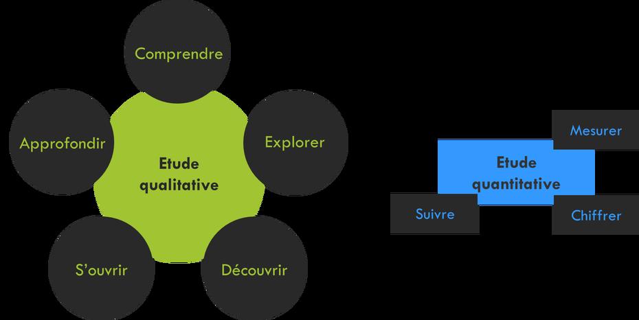 etude de marché : étude qualitative et étude quantitative