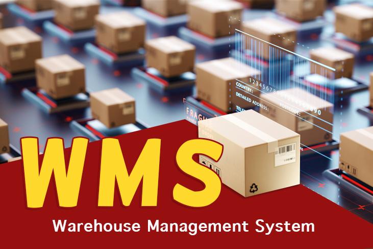 WMS : le système pour gagner en efficacité dans sa gestion d'entrepôt