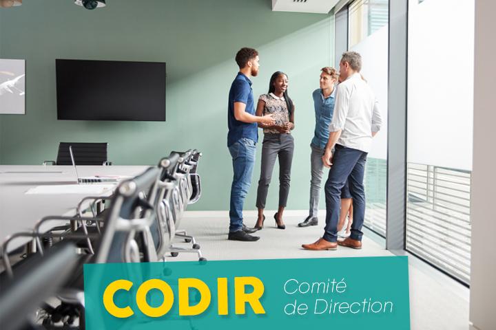 Les secrets d'un CoDir efficace et innovant