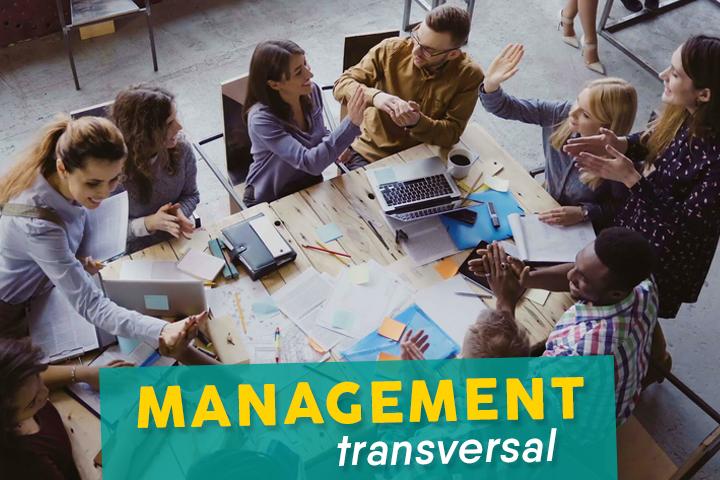 Le management transversal, l'art de tisser des liens entre les métiers