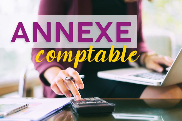 Quel contenu dans l'annexe comptable pour des comptes annuels en règle ?