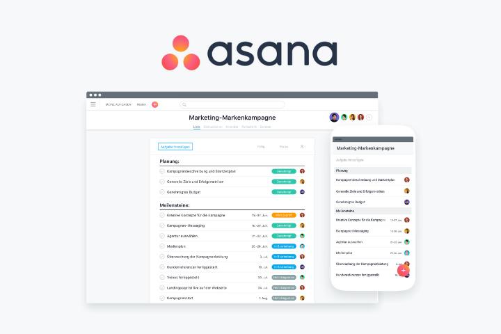 Asana auf dem Prüfstand: Test und Neuigkeiten