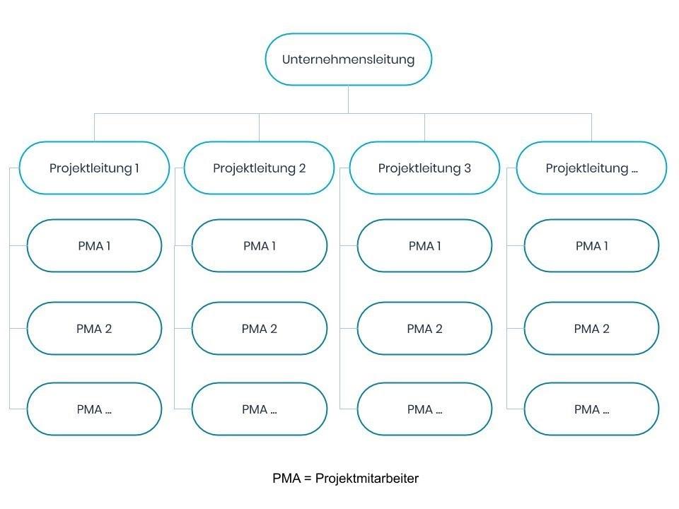 Reine Projektorganisation Schema