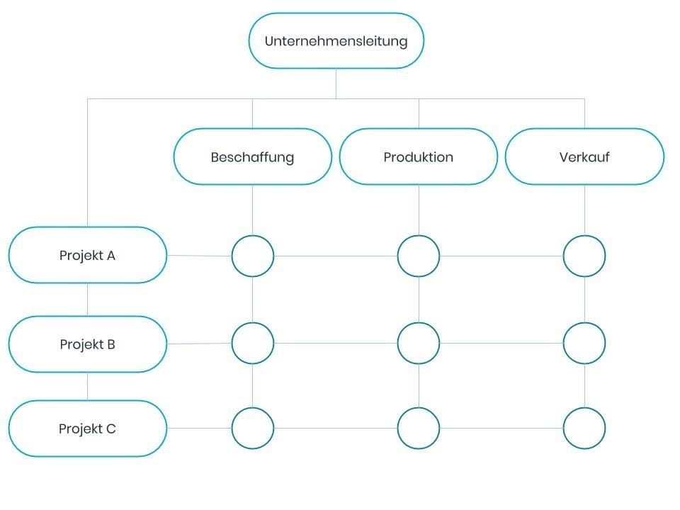 Matrixorganisation Schema
