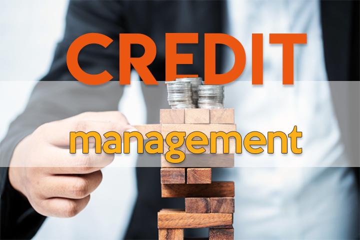 Credit Management: An der Schnittstelle von Vertrieb und Finanzen