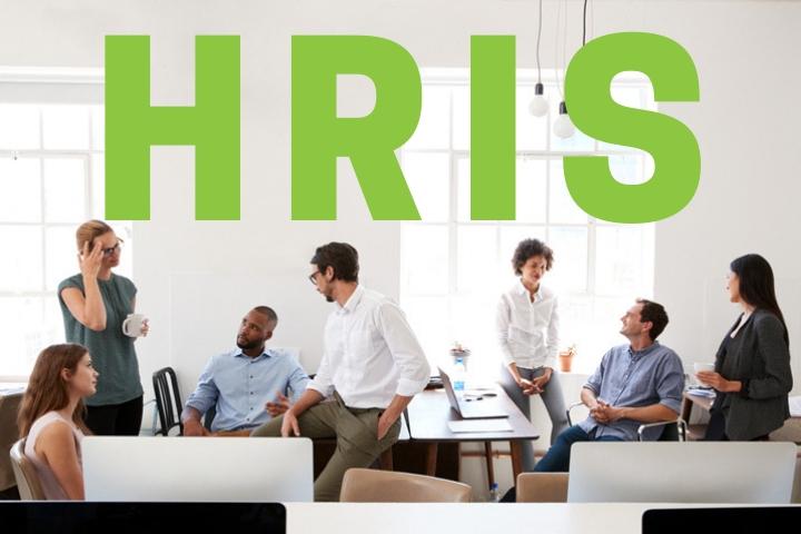 HRIS: definizione, strumenti, risorse e consulenza per una gestione efficace delle risorse umane