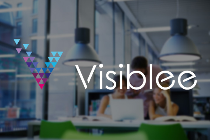 How to identify your Website's visitors? Visiblee!