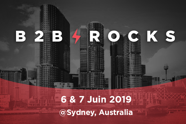 b2b-rocks-saas