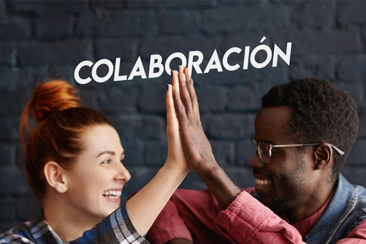 Software de Colaboración