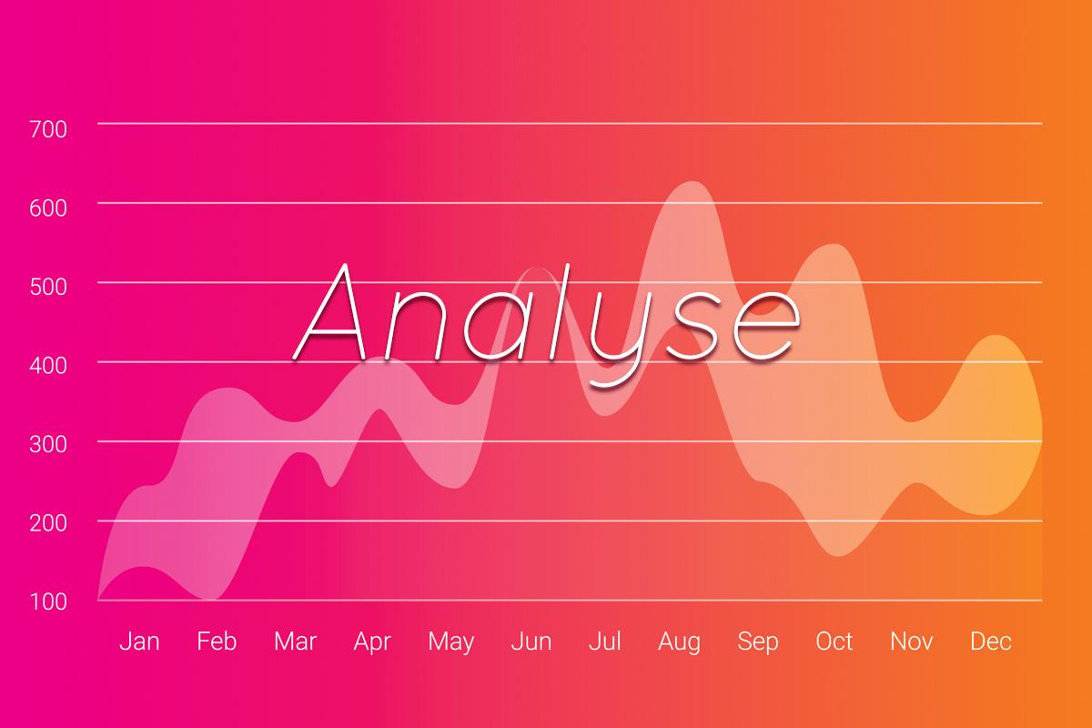 Software über Analyse