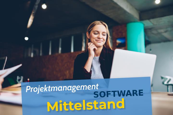 projektmanagement software mittelstand