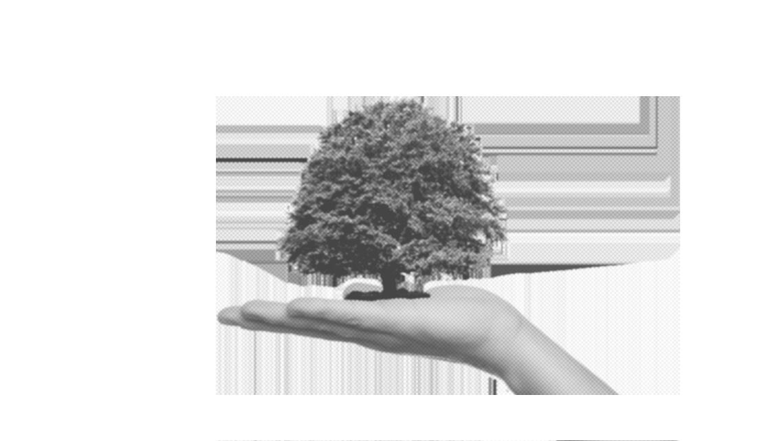 Documento di valutazione dei rischi ambientali: come si fa?