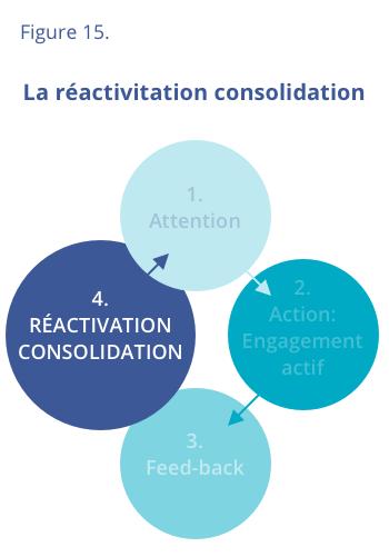 La réactivation consolidation