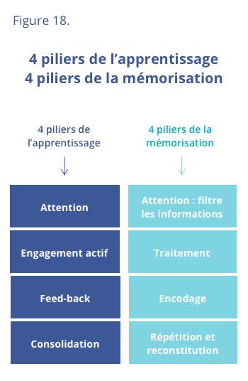 4 piliers de la mémorisation