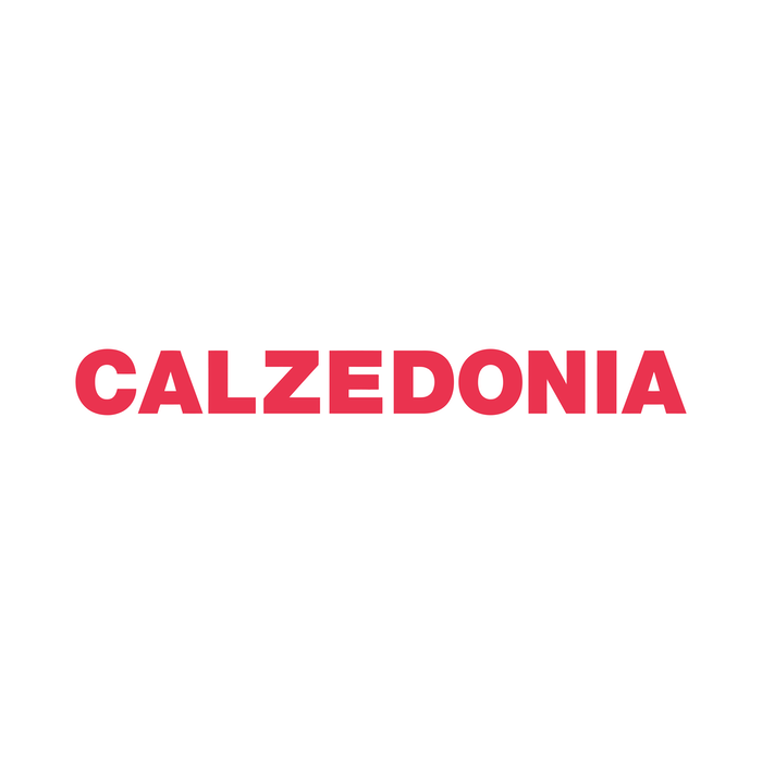 1493811027 calzedonia 01 png