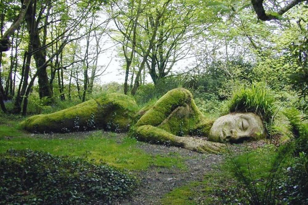 Dreaming the Land & Native Spirituality