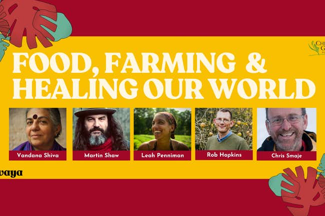 food, farming and healing our world