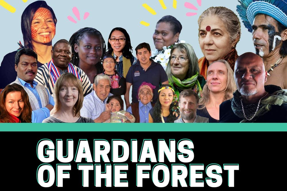 guardians of the forest, online course, forest care, indigenous wisdom,