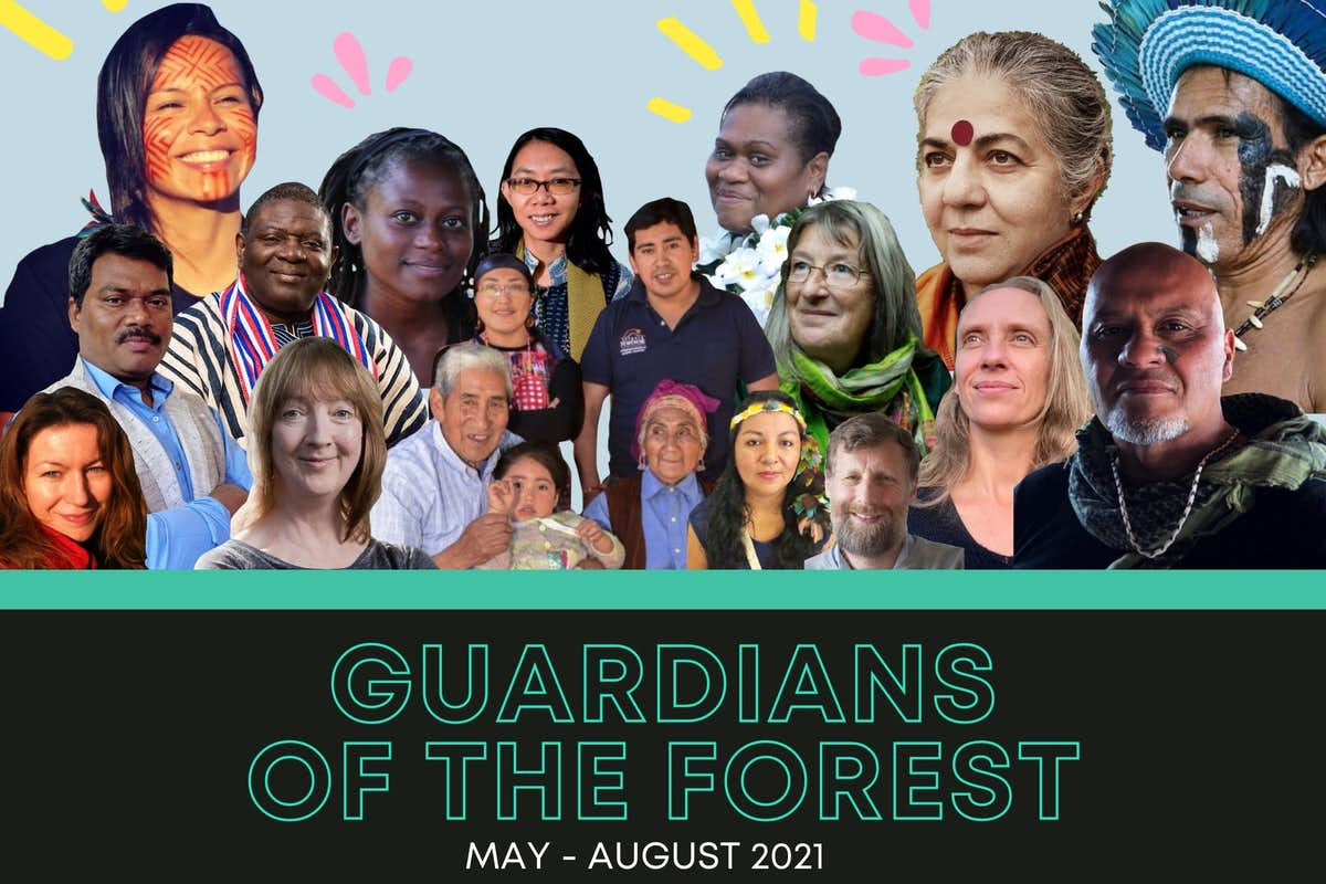 guardians of the forest, indigenous wisdom, online course, Vandana Shiva,