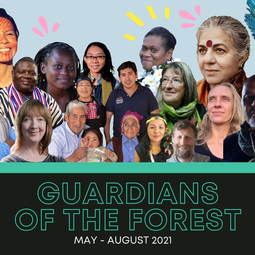 guardians of the forest, indigenous wisdom, online course, Vandana Shiva,