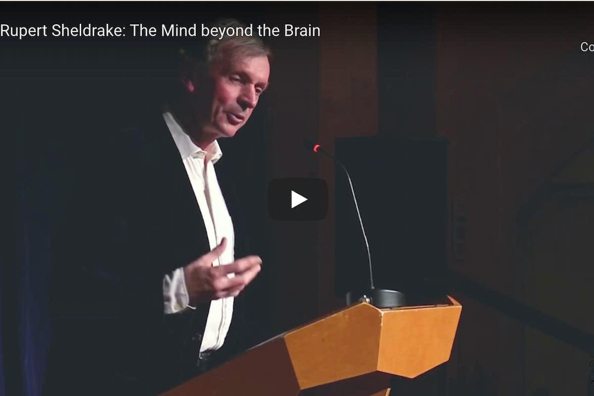 rupert sheldrake mind beyond the brain