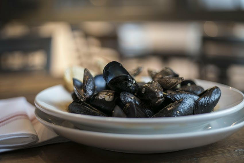 a plate of mussles
