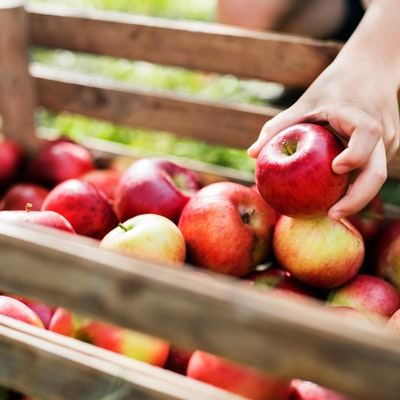 a child's hand picks an apple out of a wooden create filled with red apples