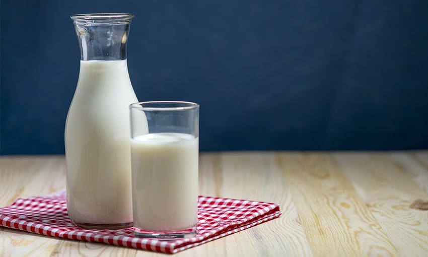 Large glass bottle of milk next to a glass of milk on a red and white checkered tablecloth on a wooden table