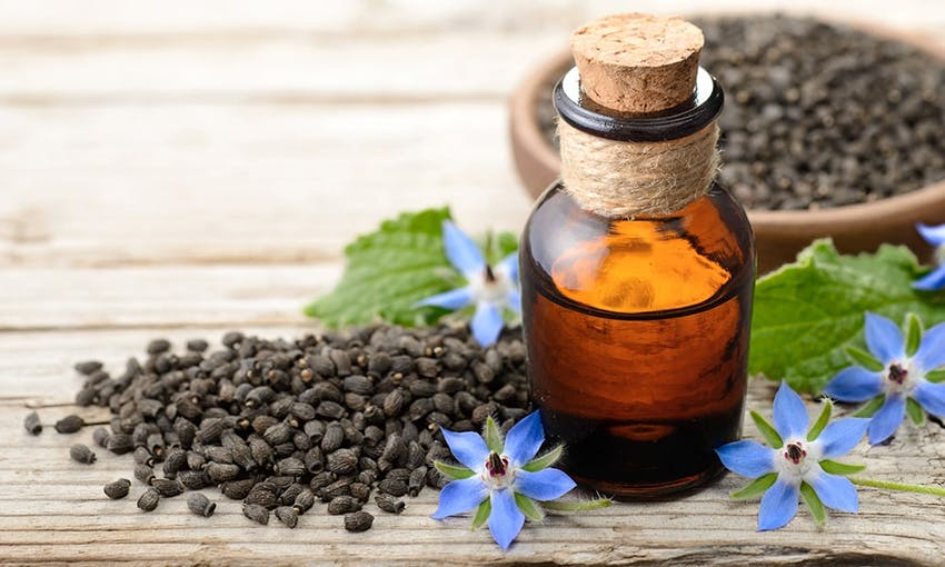 a small corked jar of borage oil next to a pile of borage oil seeds and borage oil plants on a wooden table