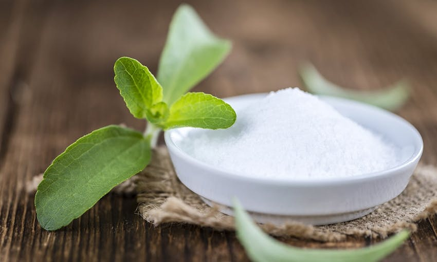 a small petri dish filled with stevia sweetener next to a stevia plant on a wooden table