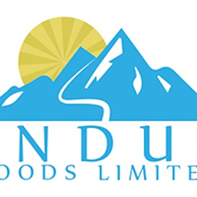 Indus Foods Limited in Light Turquoise text underneath the same colour light blue mountain range with a yellow wheel symbolising the sun appearing behind the mountains