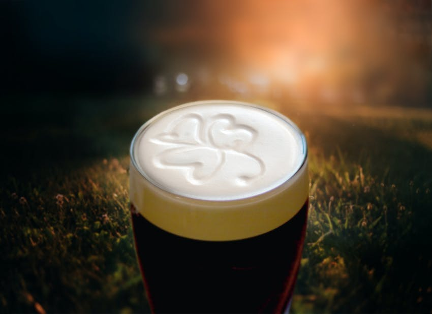 A clover in a pint of Irish Guinness