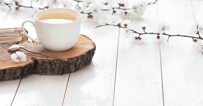 White tea - one of the world's most famous teas