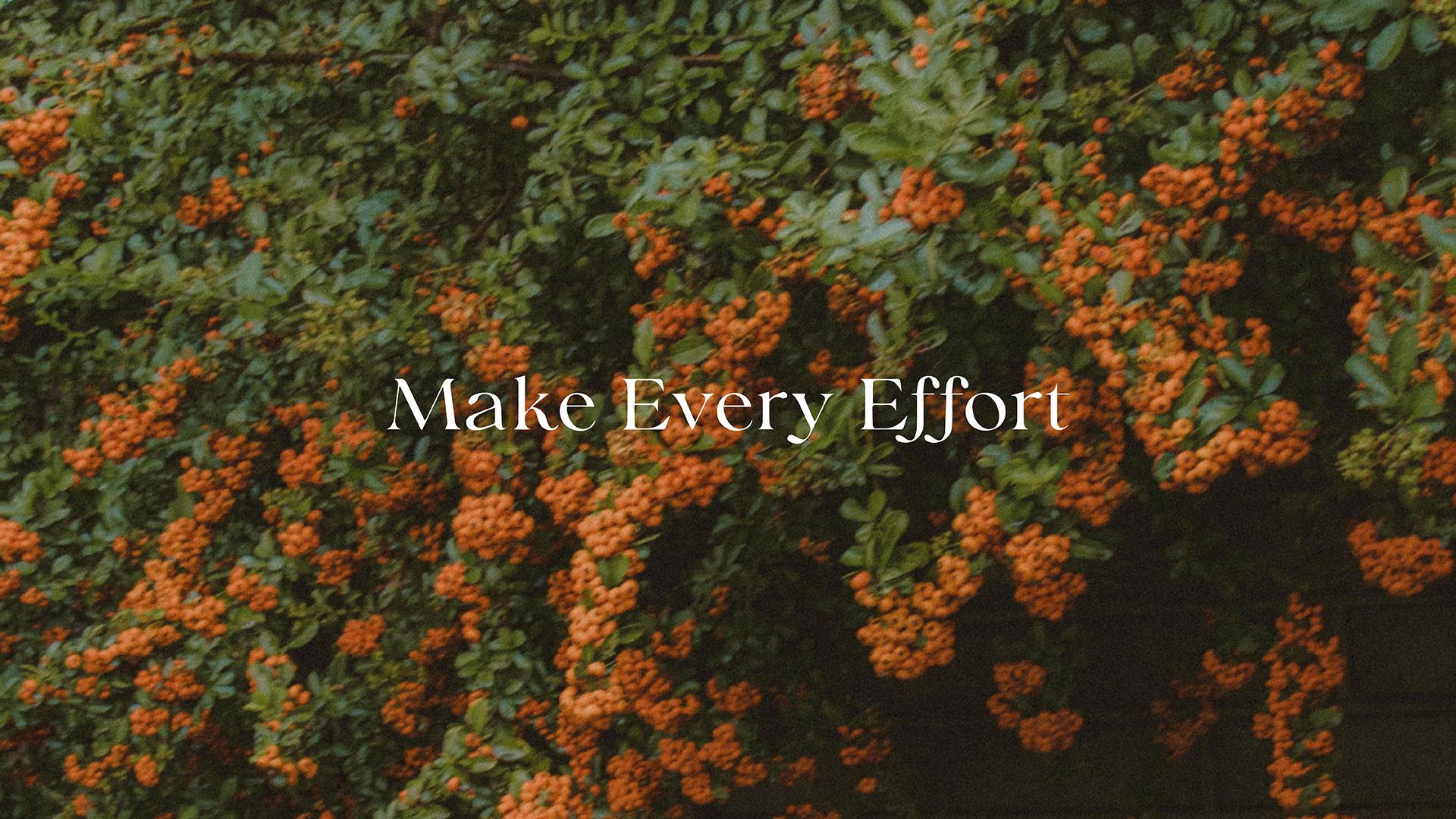 Series: Make Every Effort