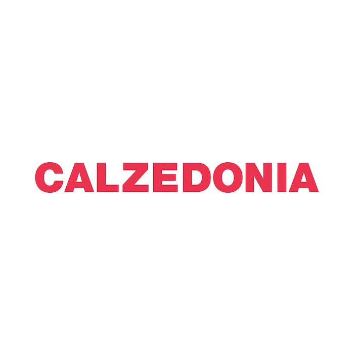 1496677201 calzedonia 01