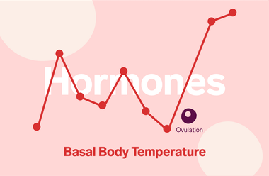 Red temperature linechart on pink background with ovulation marked. The word 'Hormones' is written in white text and 'Basal Body temperature' in red.