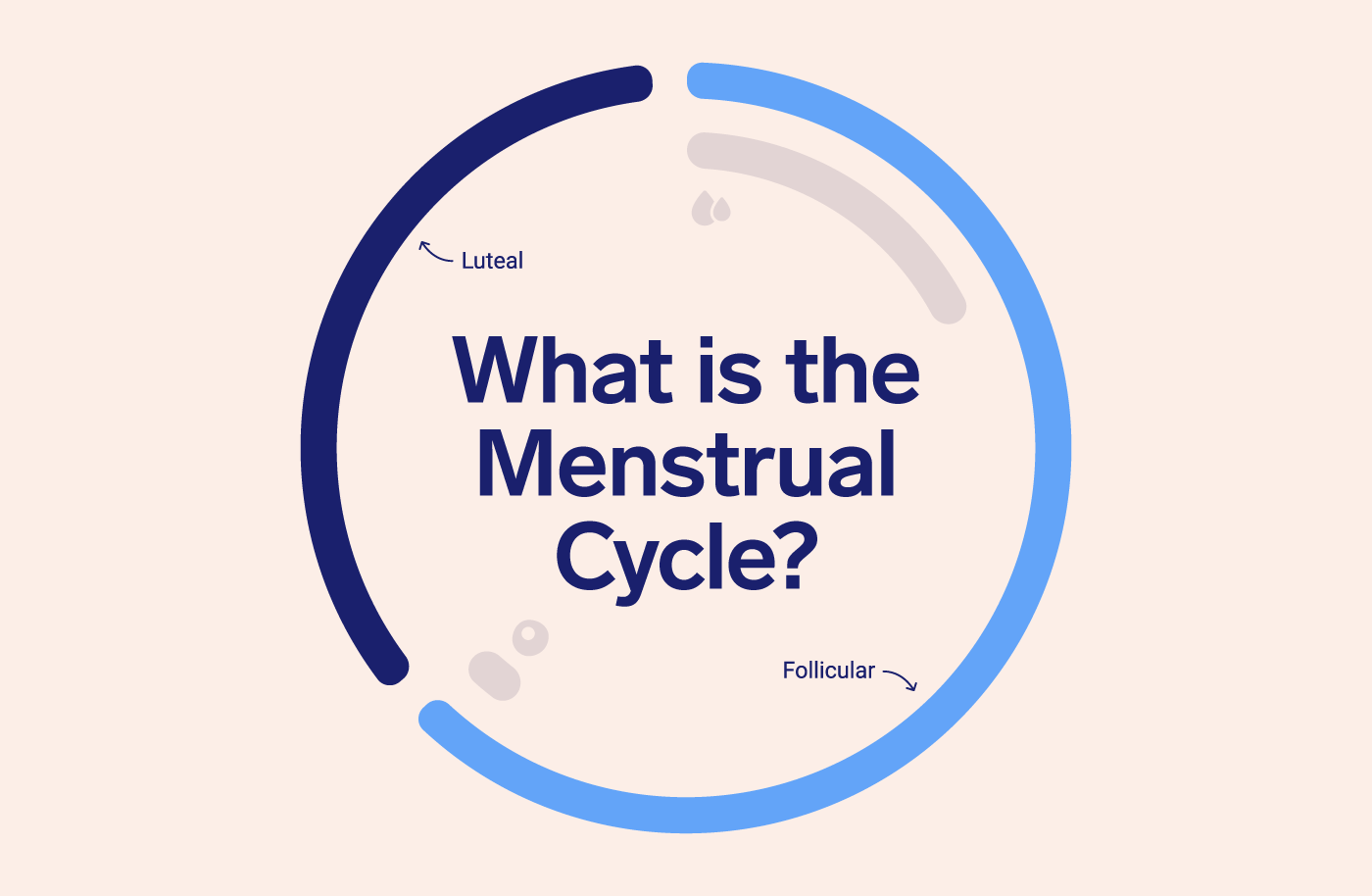 image of a circle showing length of follicular and luteal phase with the test 'what is the menstrual cycle?'