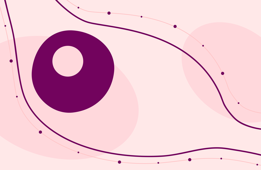 Signs of ovulation: an egg cell being released from the ovary,