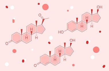 Sex hormones: estrogen, progesterone and testosterone