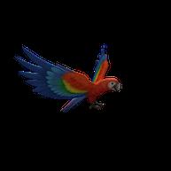 Roblox - Parrot Pal