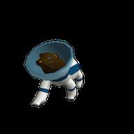 Roblox - Otter Space Explorer