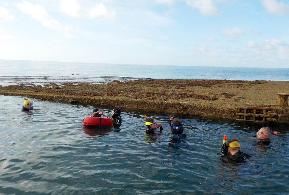 A group of 7, snorkelling and exploring the inner mulberry harbour